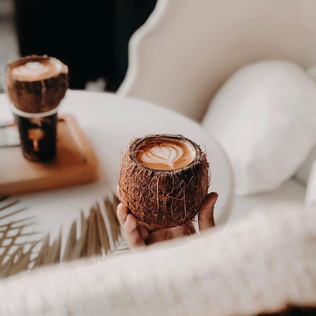 مقهى ذا بالم قهوة مختصة